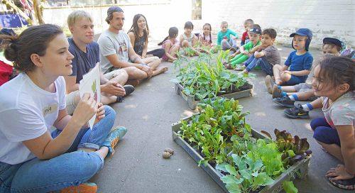 Erst anfassen, dann einpflanzen: Kinder legen Gemüsebeet an