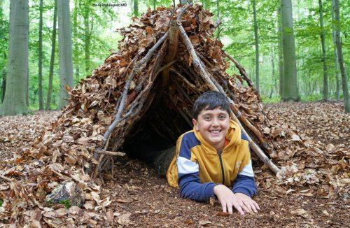 Sprache lernen im Wald